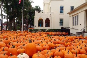 Opening Oct. 8: The Pumpkin Patch at First United Methodist on King Street in St. Augustine