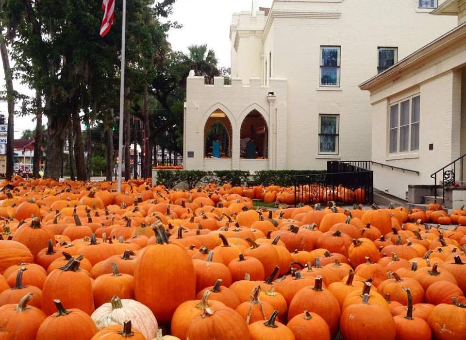 2017 Pumpkin Patches in St  Augustine & St  Johns County | Totally