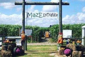 Oct. 3-25: Fall fun in The Maze at Sykes Family Farms